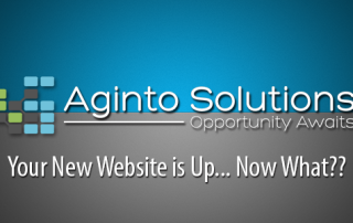 expert website design sarasota